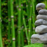 Ładny oraz czysty zieleniec to zasługa wielu godzin spędzonych  w jego zaciszu w trakcie pielegnacji.